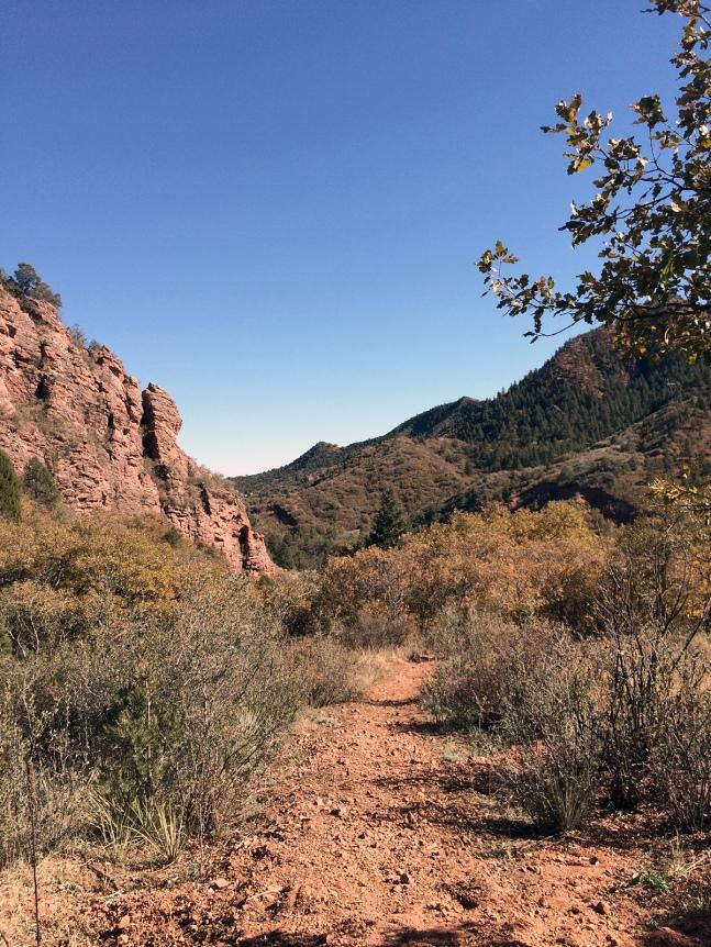 Ute Pass Trail 3