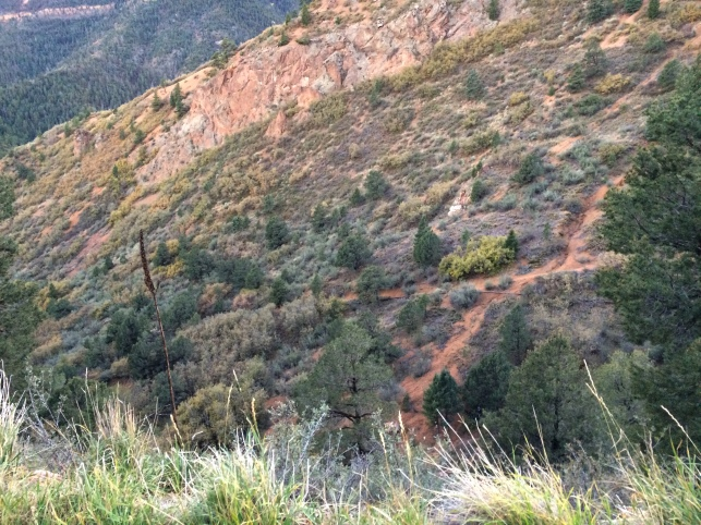 Ute Pass Trail 8