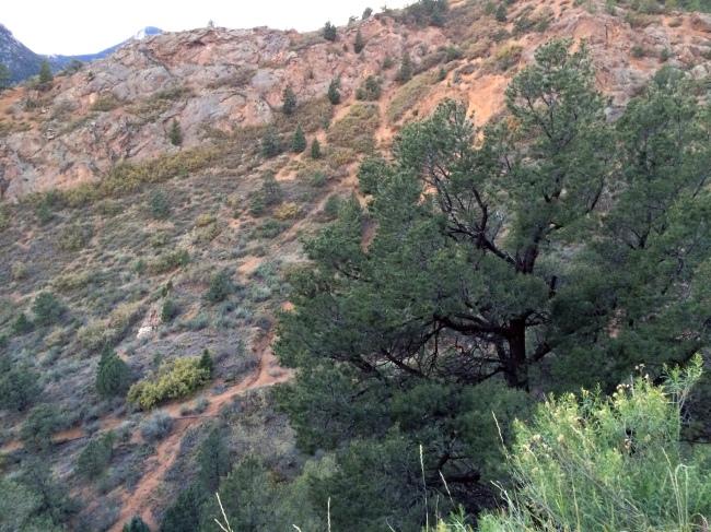 Ute Pass Trail 9